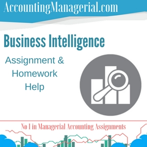 Business Intelligence Assignment & Homework Help