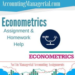 Econometrics Assignment & Homework Help