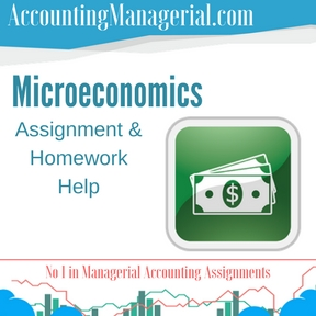 Microeconomics Assignment & Homework Help