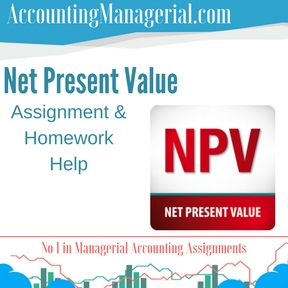 Net Present Value Assignment & Homework Help