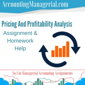 Pricing And Profitability Analysis Assignment & Homework Help