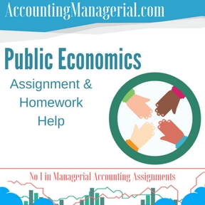 Public Economics Assignment & Homework Help