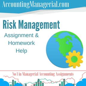 Risk Management Assignment & Homework Help