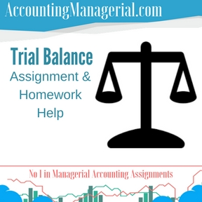 Trial Balance Assignment & Homework Help