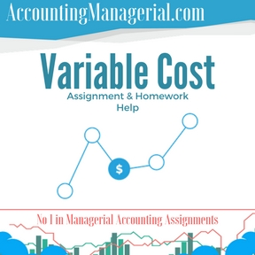 Variable Cost Assignment & Homework Help
